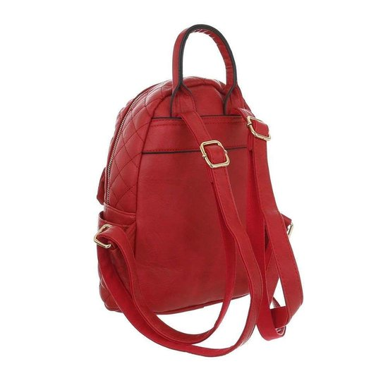 Classy rode backpack.