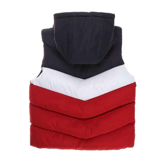 Blauw-wit-rode gewatteerde jongens jas zonder mouwen.