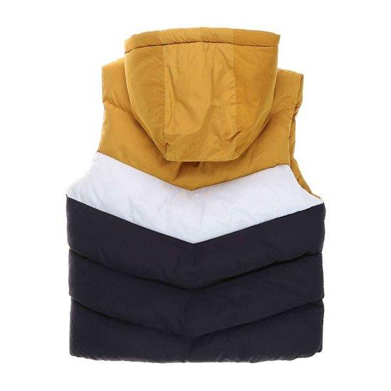Geel-wit-blauwe gewatteerde jongens jas zonder mouwen.